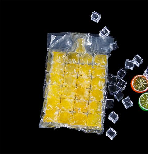 Disposable Ice Cube Bag